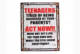 Plåttavla Teenagers