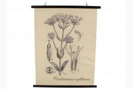 """Tavla """"Centaurium Erythraea"""" 100 cm"""